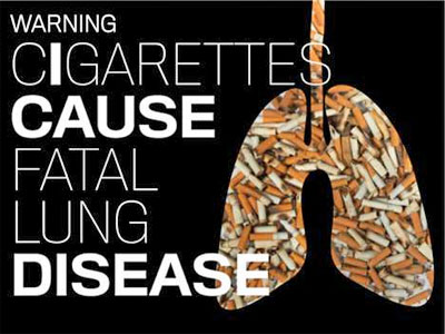 Cigarettes are Extremely Addictive Due to the Drug ...